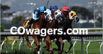 sports betting domain cowagers.com