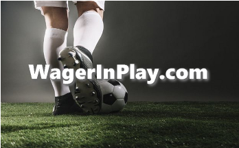 Best betting domain name wagerinplay.com is for sale
